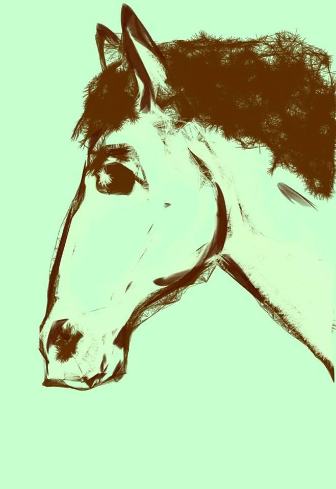 Кон бе кон